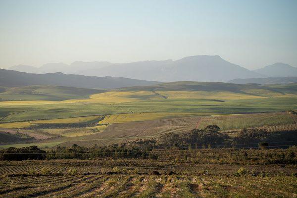 Berseba farm scenery